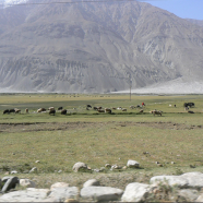 Afghanistan's newest national park is bigger than Yellowstone