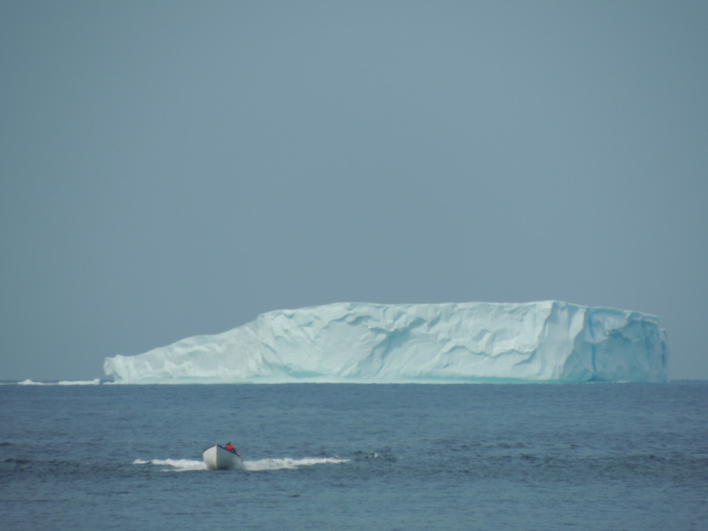 "A ""table"" iceberg off the coast of Change Islands, August 4, 2014. (Bonnie J. McCay)"