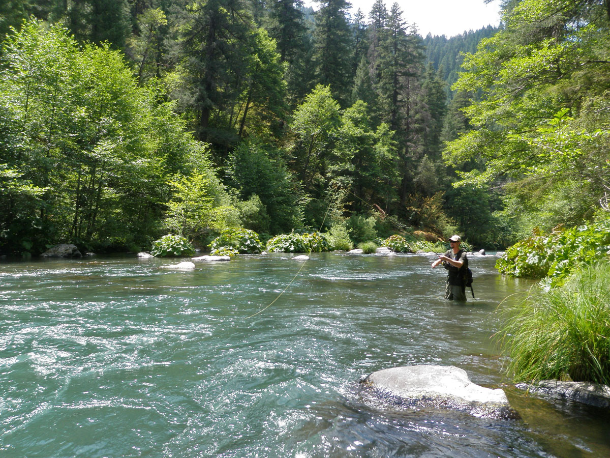 Glaciers are muddying rivers with drought to blame for River trout fishing