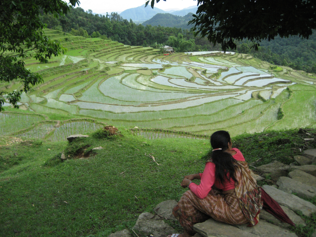 A woman in Pothala, Nepal, enjoys the view of terraced rice fields, whose potential ecosystem services include groundwater recharge and flood and erosion mitigation.  Climate change in the Himalayas has affected women more disproportionally than men. (Bas Bouman/IRRI Photos/Flickr)BAS BOUMAN