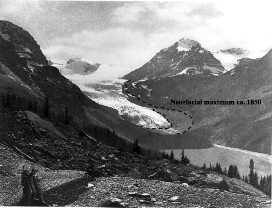 Peyto Glacier at 1896, taken by Walter Wilcox. (Source: PARC Project P55 Report)