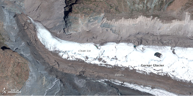 Switzerland's Gorner Glacier as seen from space. (NASA)