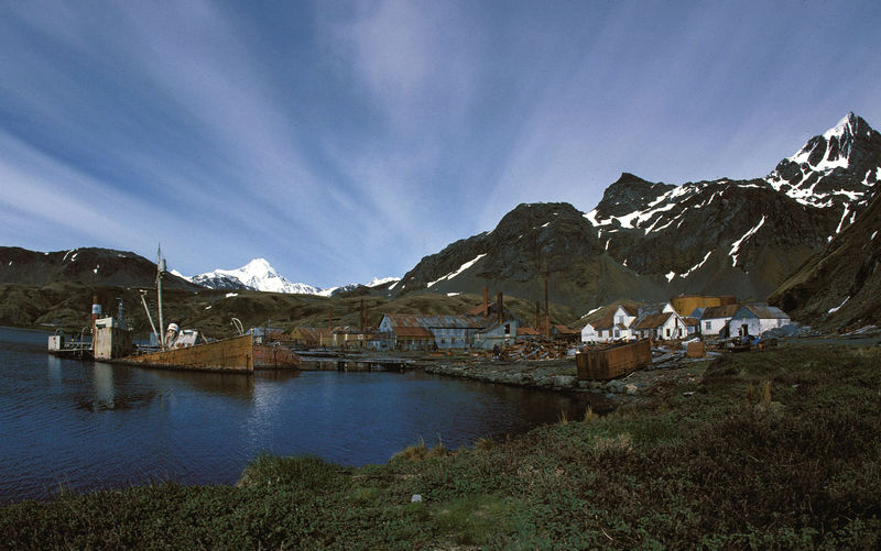 Grytvikken at South Georgia, whaling station. source: Wikimedia Commons