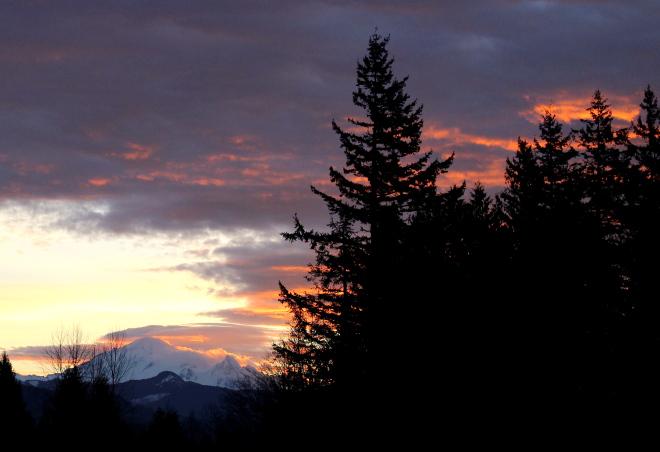 sunrise11515
