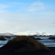 Photo Friday: Iceland's Black Sand Beaches