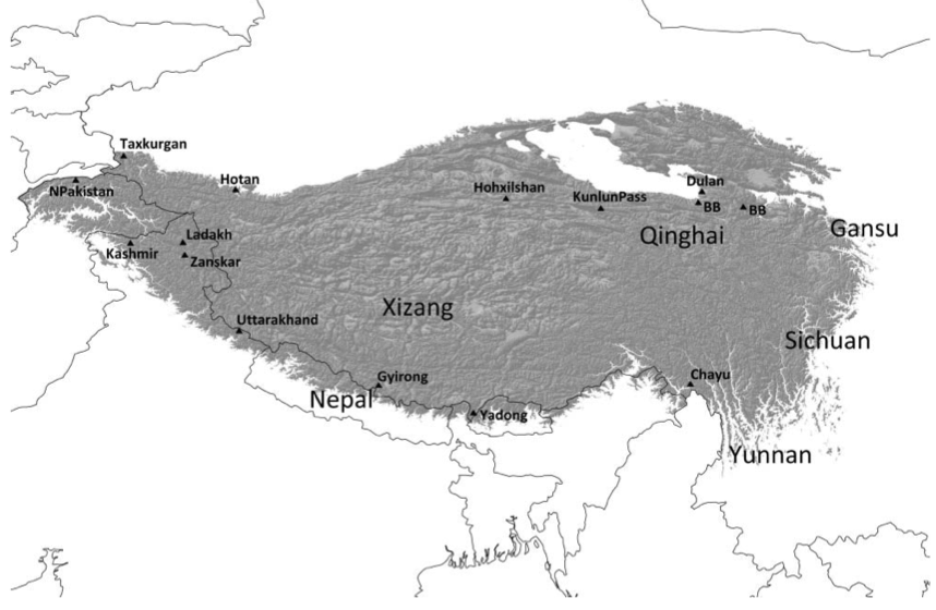 Map showing study region, in grey. (Photo: Williams et al.)