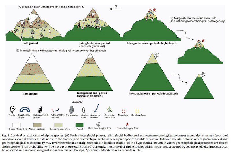 The relation of geomorphological diversity to species survival (Source: Gentili et al./Ecological Complexity).