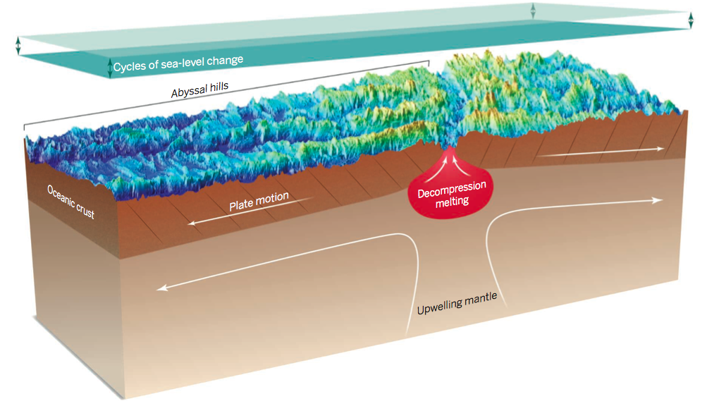 The sea floor spreading mechanism. The upwelling of mantle pushes the plate away and forms the abyssal hills. (Source: Conrad/Science).