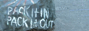 """An image of a rock that has been painted to read """"Pack It In Pack It Out"""""""