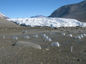 Collecting samples in glacier forelands (source: LTERNET)