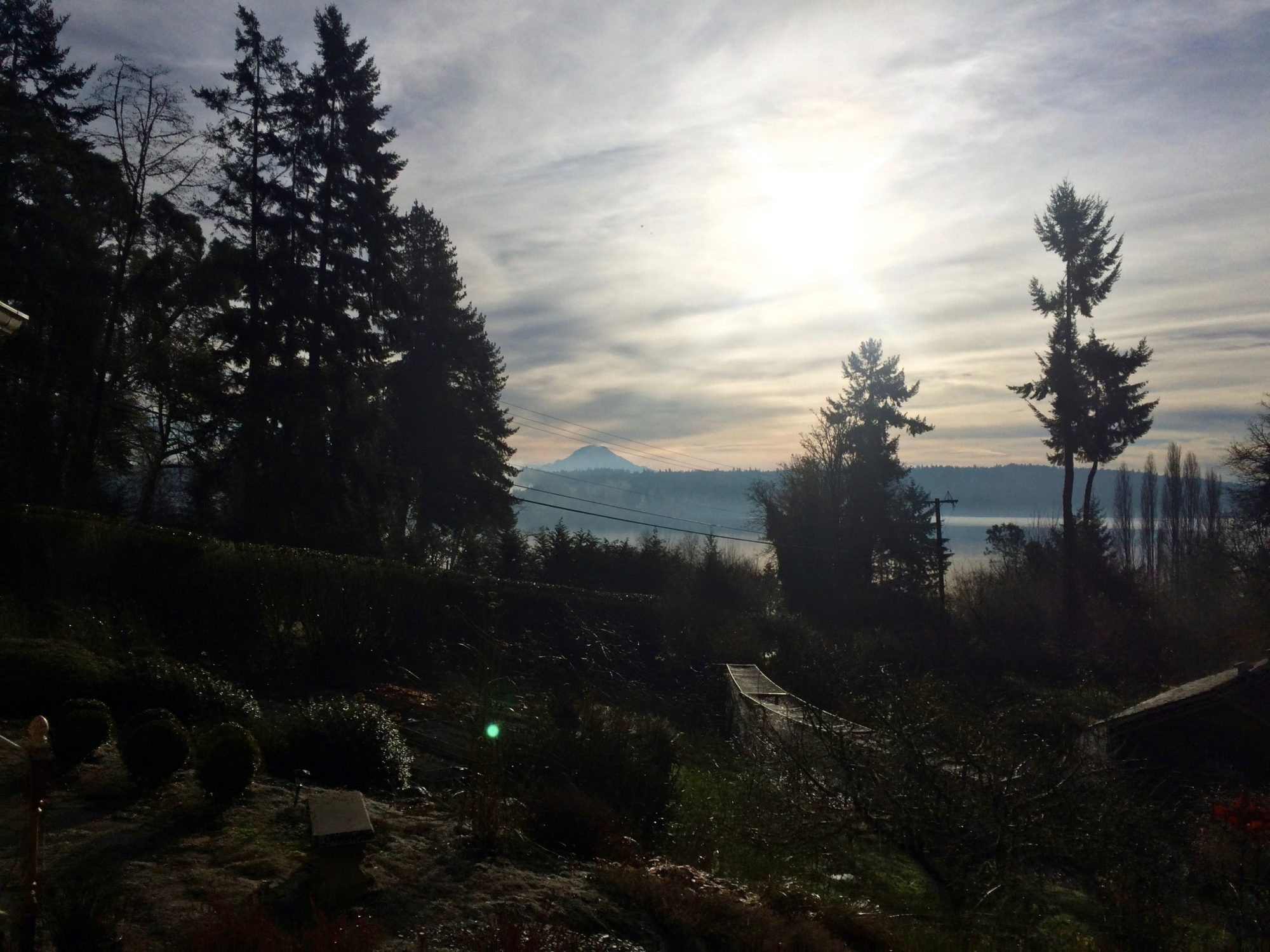 View of Mt. Rainier from Vashon Island, WA