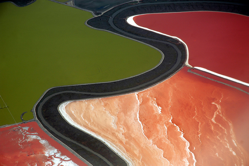 Red and green algae plumes atop Californian water fields. (Courtesy of :Caribb /Flikr)