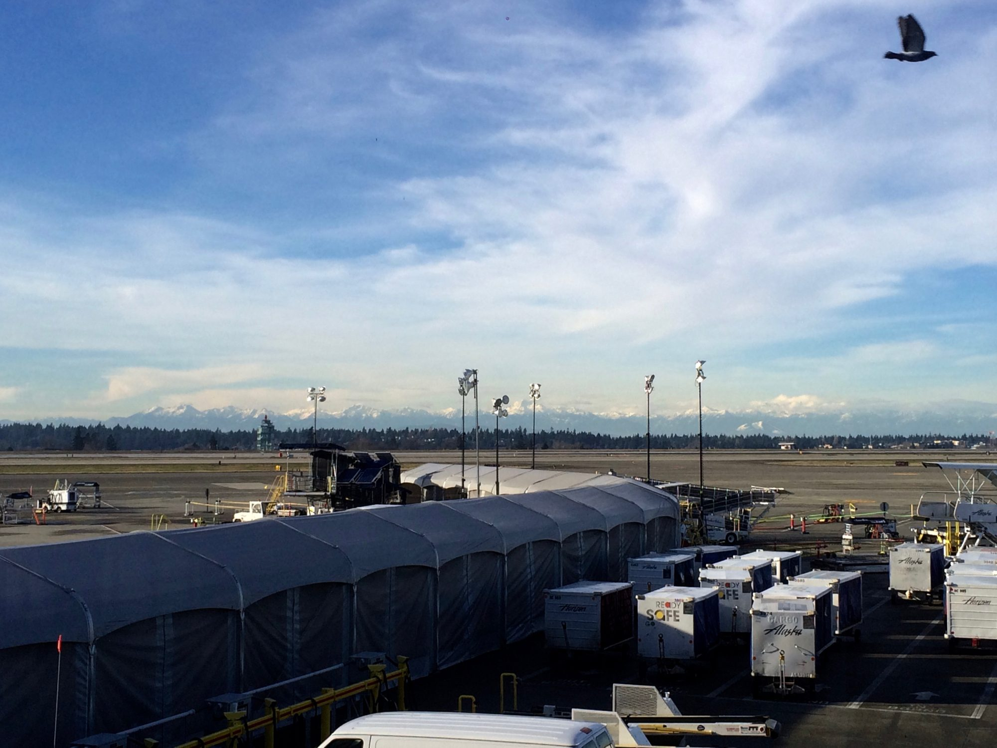Glaciers atop The Olympic Mountain Range from the SeaTac airport
