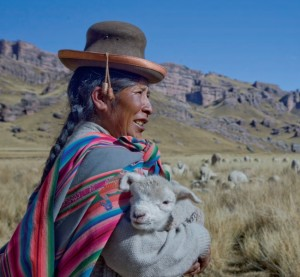 Indigenous herder and sheep near Huaytapallana source: UNU)
