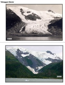 Before and after images of Toboggan Glacier (source: S. Paige/B. Molnia/USGS/NESTA)