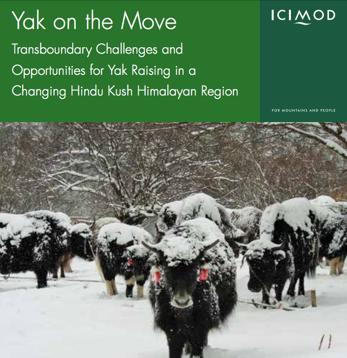 Yak on the Move Report Cover (ICIMOD)