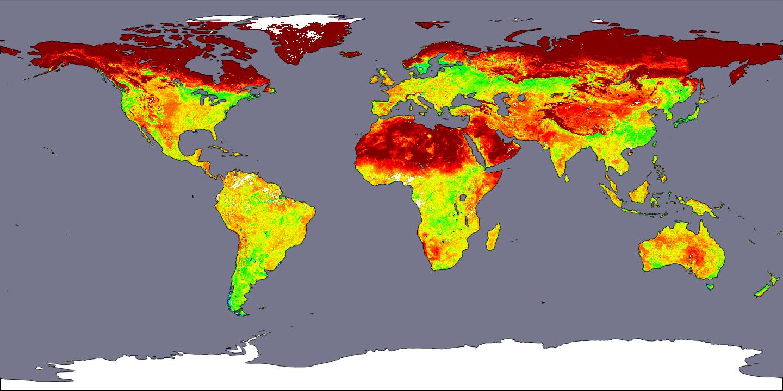 decreasing albedo in european cities essay