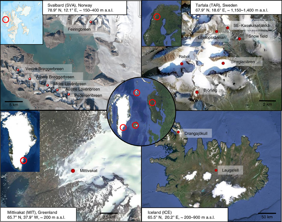 Locations of the 16 glaciers and snow fields across the Arctic, where 40 sites of red snow were sampled (Nature Communications)