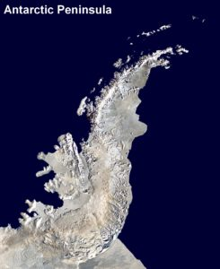 Satellite image of the Antarctic Peninsula (Source: Dave Pape/Anna Frodesiak)
