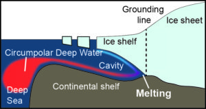 Diagram illustrating how Circumpolar Deep Water flows onto the continental shelf and drives high melt rates at the grounding line of glaciers (British Antarctic Survey)