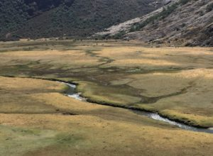 Wetlands in Copa Grande, Peru, with woodlands and grasslands on slope (source: Ben Orlove)