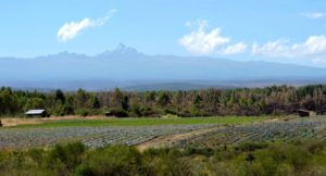 crop fields at the foot of Mount Kenya--the mountain serves as a major watershed for surrounding agriculture and livestock (Source: Cheyenne Smith)
