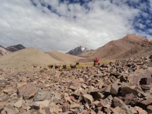 Carrying equipment to Mount Mercedario, central Andes (source: IANIGLA)