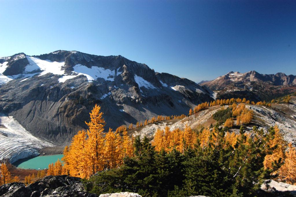 glacier-lyman-tamarack