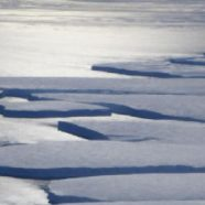 Photo Friday: Antarctic Glaciers Monitored by NASA