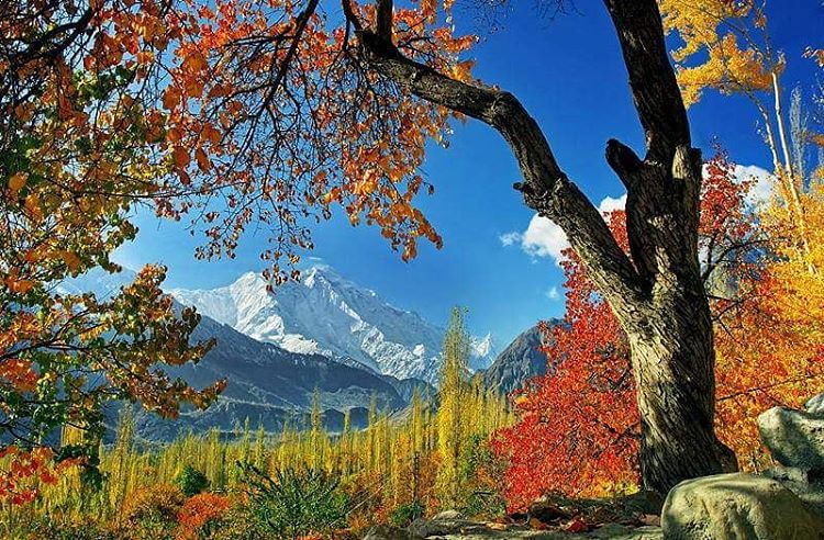 Rakaposhi Mountain located in District Nagar (Source: Pamir Times).