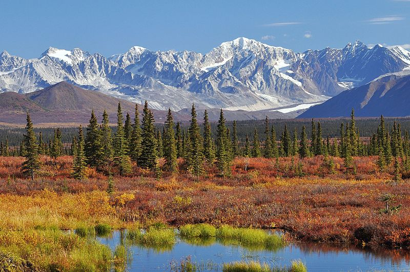 monahan_flat_and_the_eastern_alaska_range_mountains