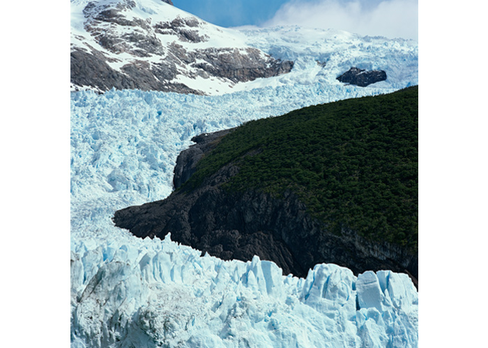 One of the few glaciers encompassed by trees. Spegazzini, Argentina, 2008 (source: Klaus Thymann/Project Pressure).