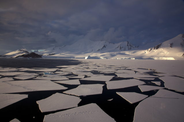 Seasonal sea ice melting influences the cycling of carbon in West Antarctica (Source: Jason Auch / Creative Commons).