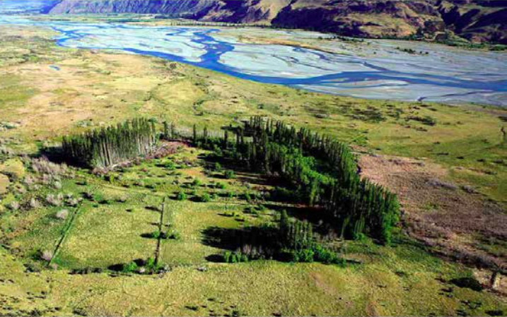 The bunds that surrounded the ice rinks still remain to the true left of the Rangitata River (Source: Ian Hill / Department of Conservation)