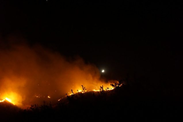 A forest fire in Santiago, Chile (Source: Pablo Trincado/Creative Commons).