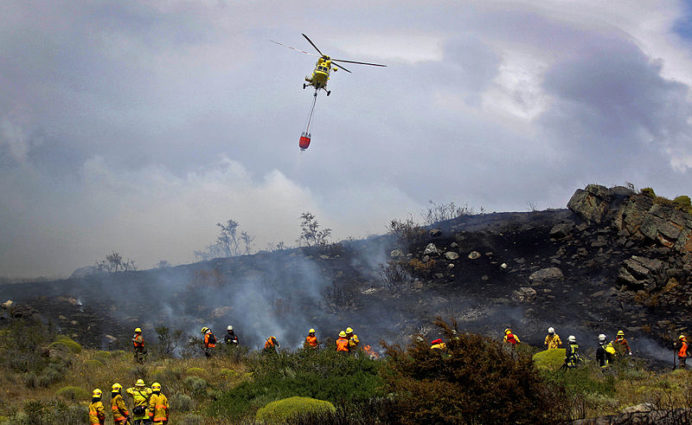 CONAF brigades fight the fire of Valparaíso, in April 2014 (Source: Government of Chile/Creative Commons).