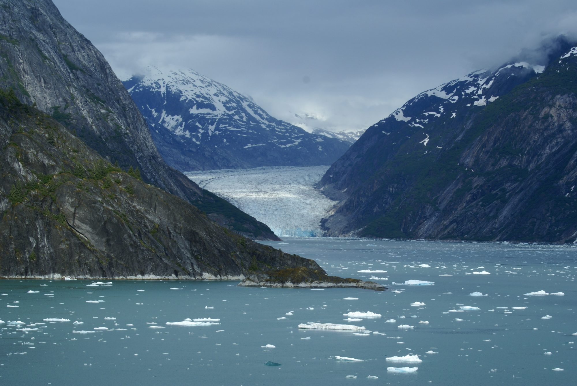 Fjords are partially submerged steep-sided valleys carved out by glacial action (Source: Richard Martin/Creative Commons).
