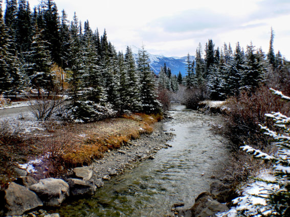 An alpine stream in Banff Canada (Source: Bernard Spragg/Flickr).