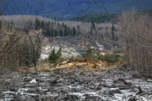 Destruction from a lahar in Washington (Source: Mitchell Battros/Creative Commons).