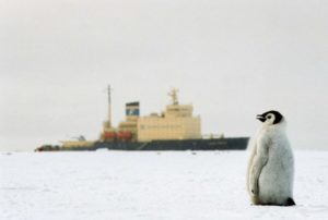 """What a big ship"" (source: Arctic Al / Flickr)."