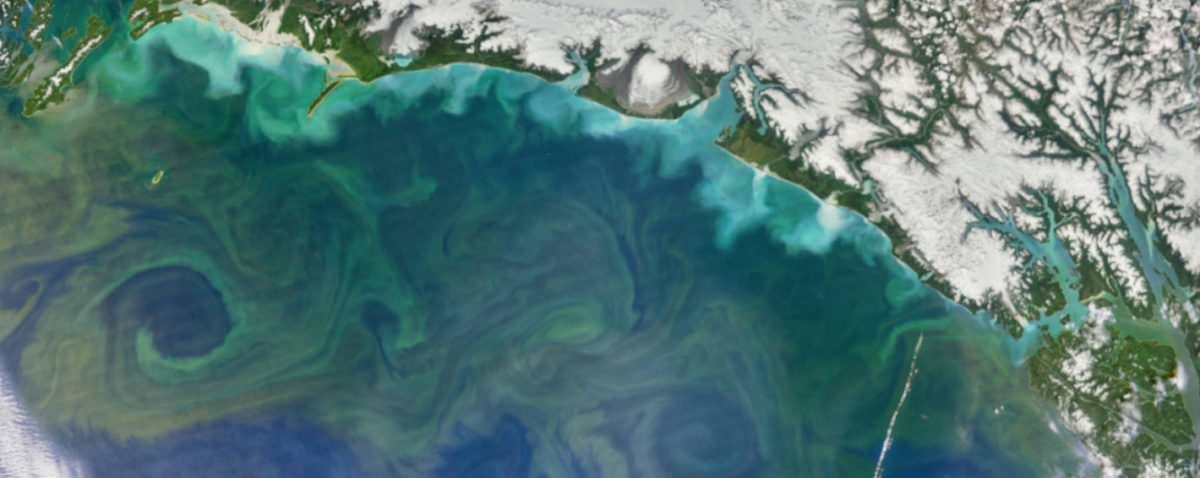 Roundup: Greenland Earthquake, Mural Restoration, and Phytoplankton