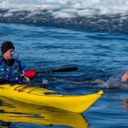 Radical Tactical Shift: Swimming in Unfrozen Places