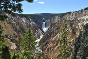 Photo of the Grand Canyon of Yellowstone National Park