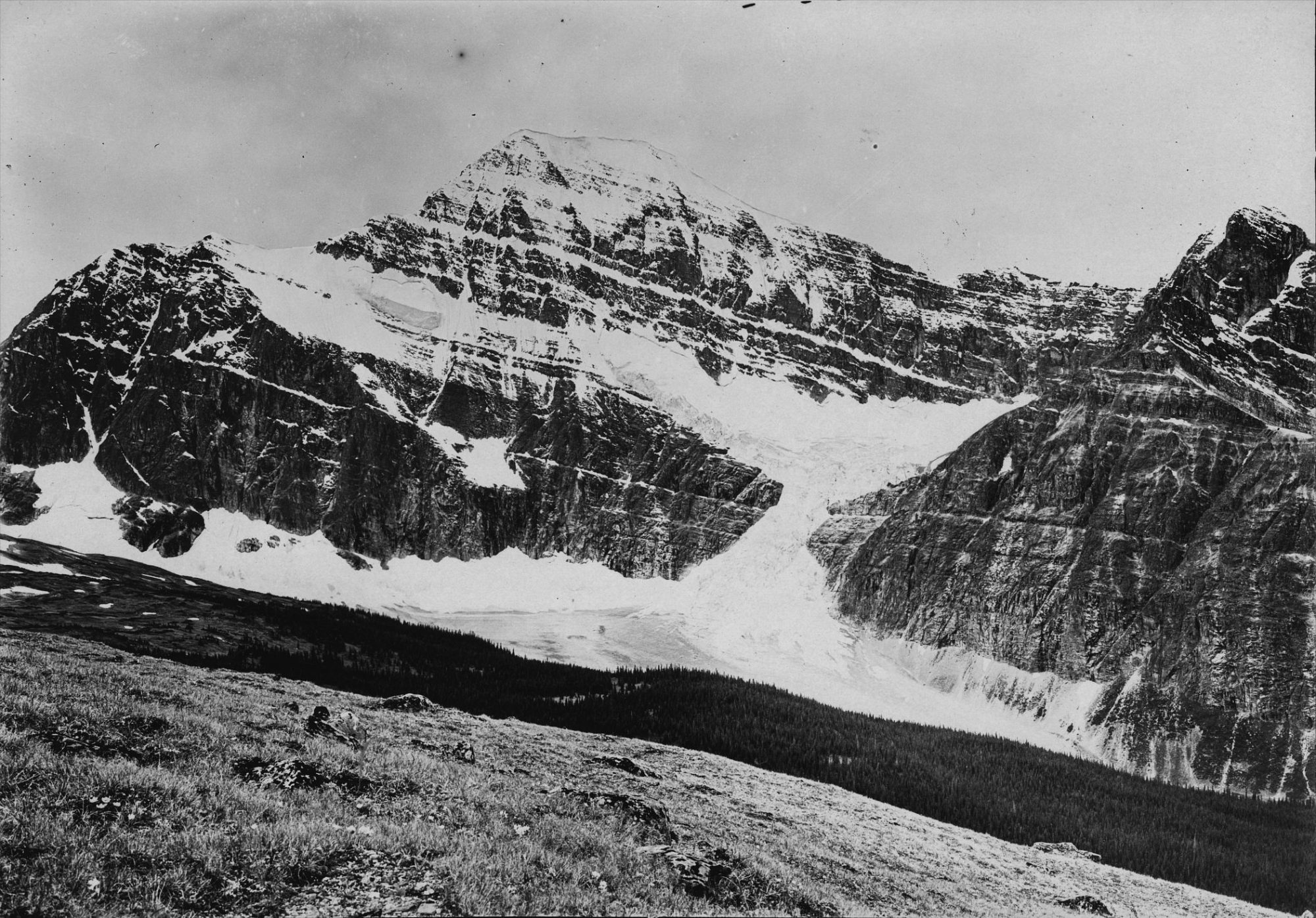 Historical image of Cavell Meadows