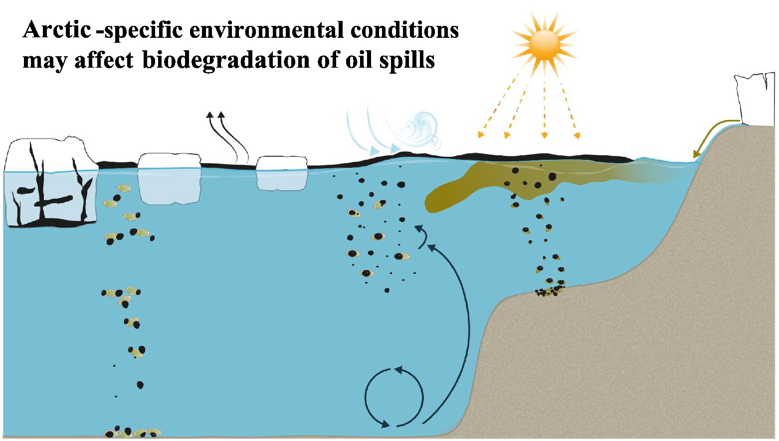 Biodegradation of oil spills in arctic specific environments (Image Source: Science of the Total Environment Journal)