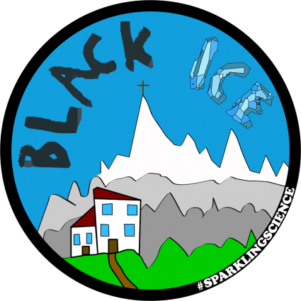 Photo of Project BlackIce logo.