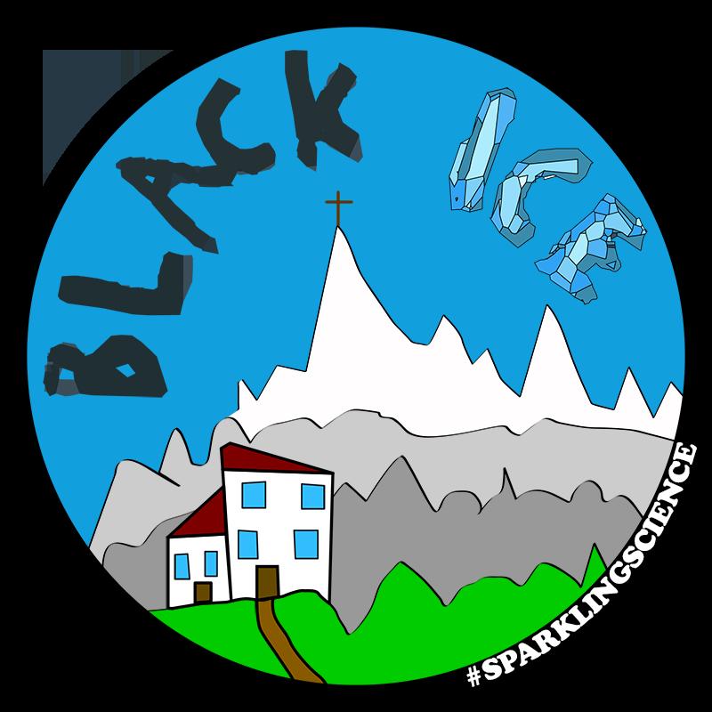 Photo of Project BlackIce logo.