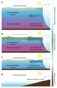 Figure of the four upwelling scenarios