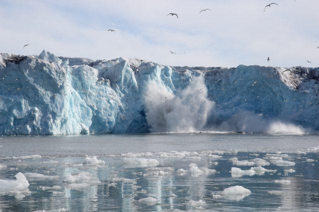 Monacobreen glacier Svalbard on GlacierHub